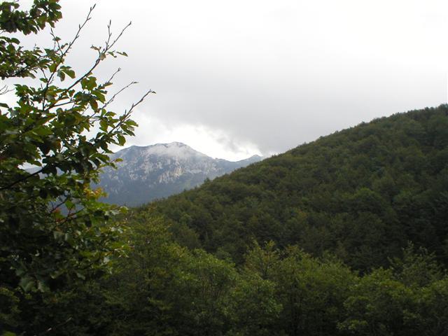RI16A6~1